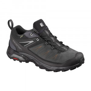 Salomon X Ultra 3 LTR GTX - phantom/magnet/quiet shade