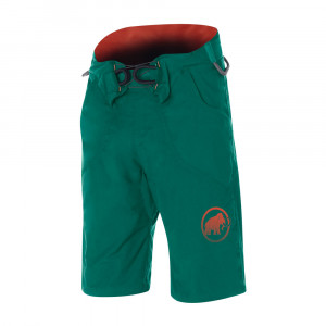 Mammut Realization Shorts - pine